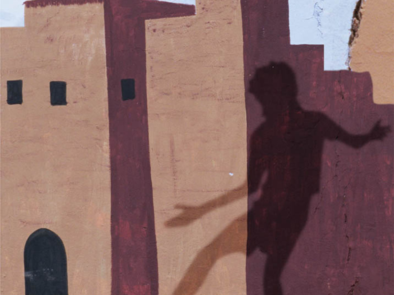 Sajjid Kašua: Tančící Arabové (detail knižní obálky)