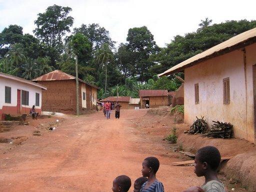 Fairtradové družstvo Kuapa Kokoo (Ghana)