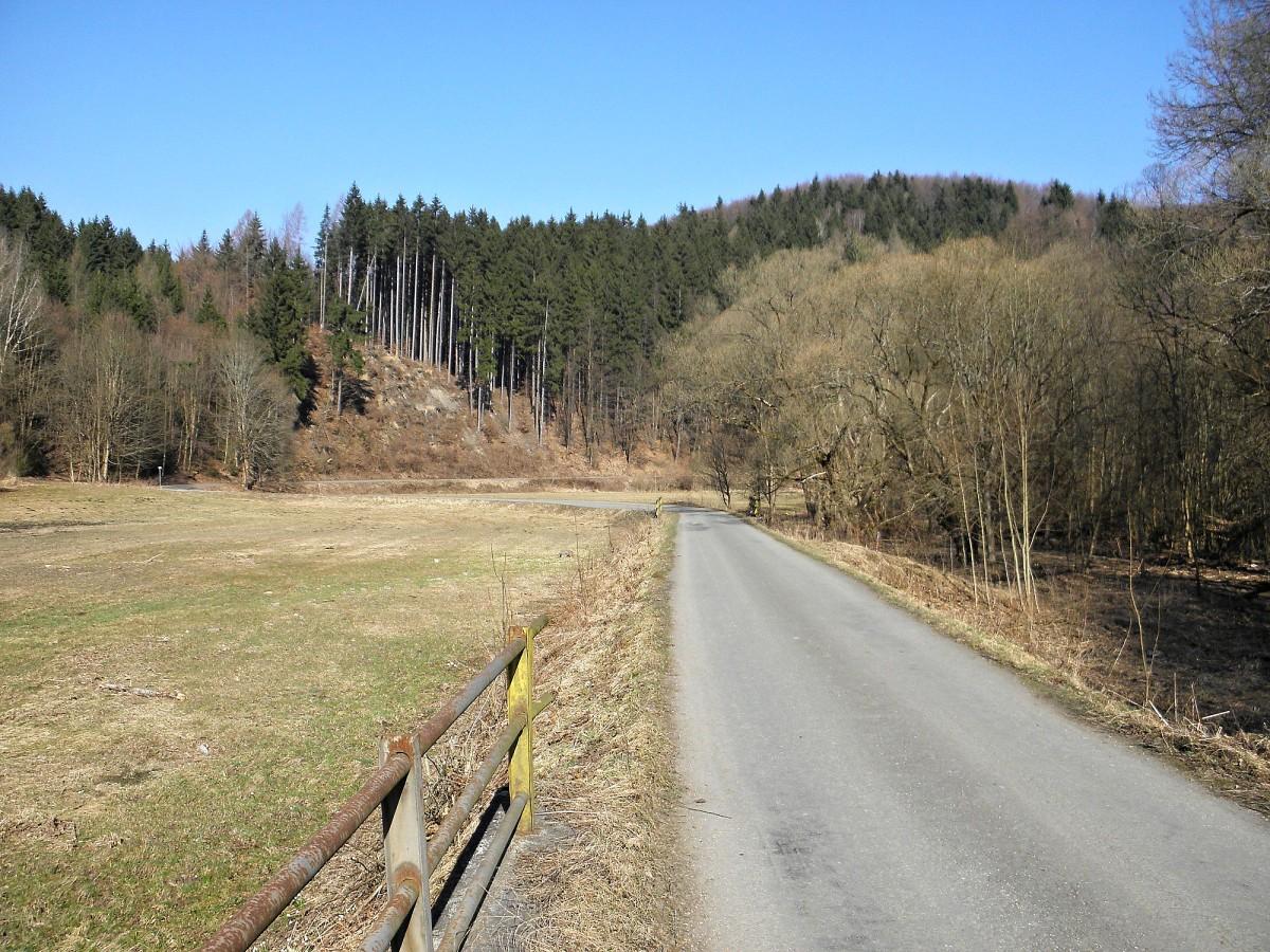 Bledule lákají na jarní procházku do údolí řeky Březné na ...