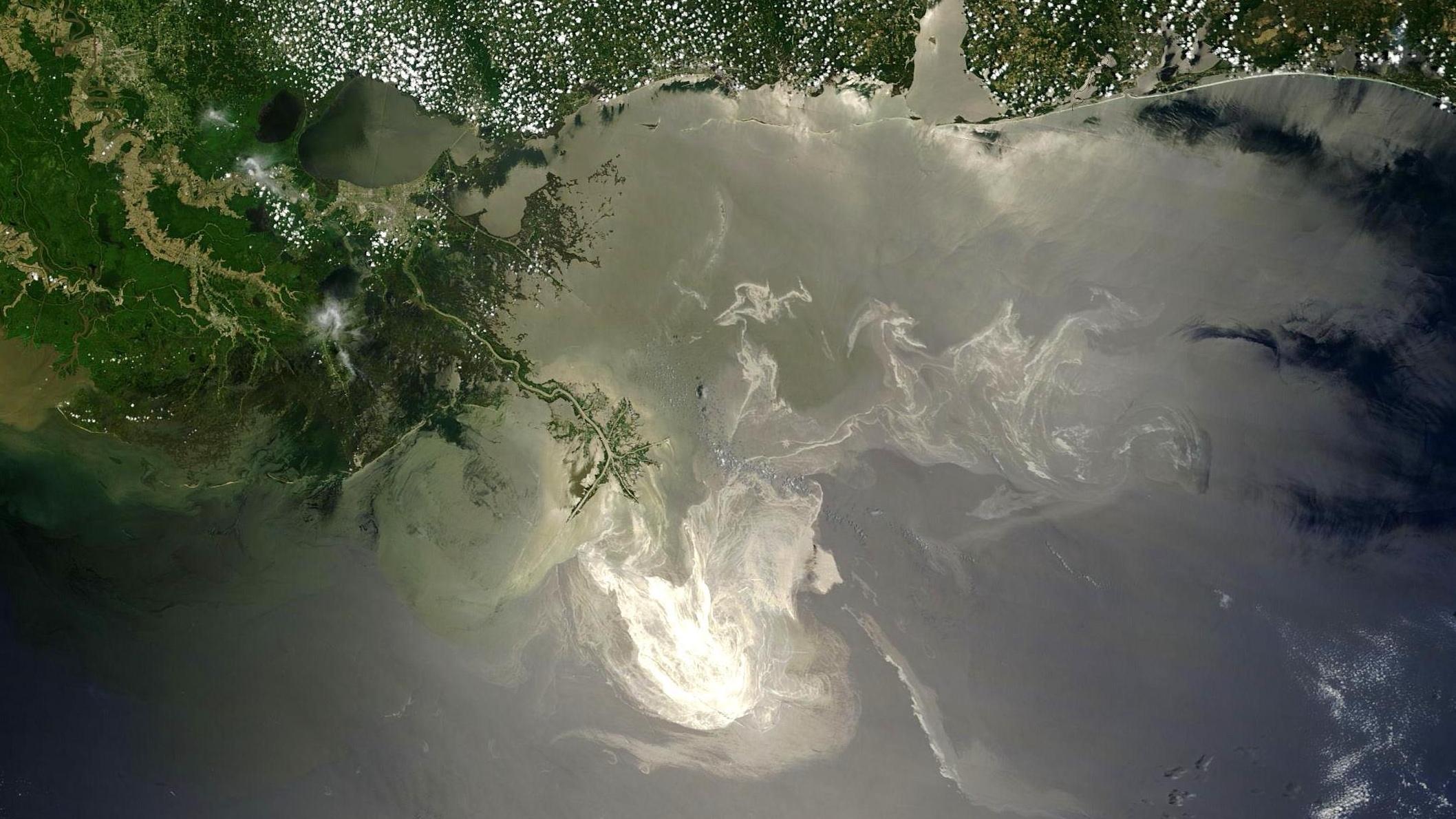 Havárie plošiny Deepwater Horizon