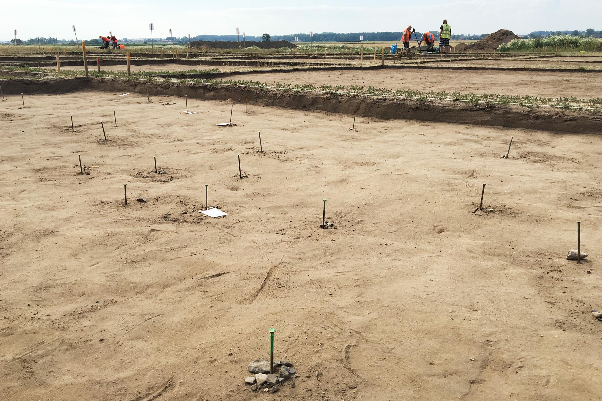 Hřebíky na archeologickém nalezišti vyznačují polohu jednotlivých nalezených střepů