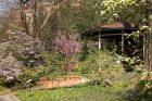 Botanická zahrada PřF UK