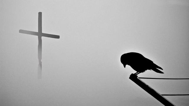 Kříž, havran, náboženství, modlitba, víra
