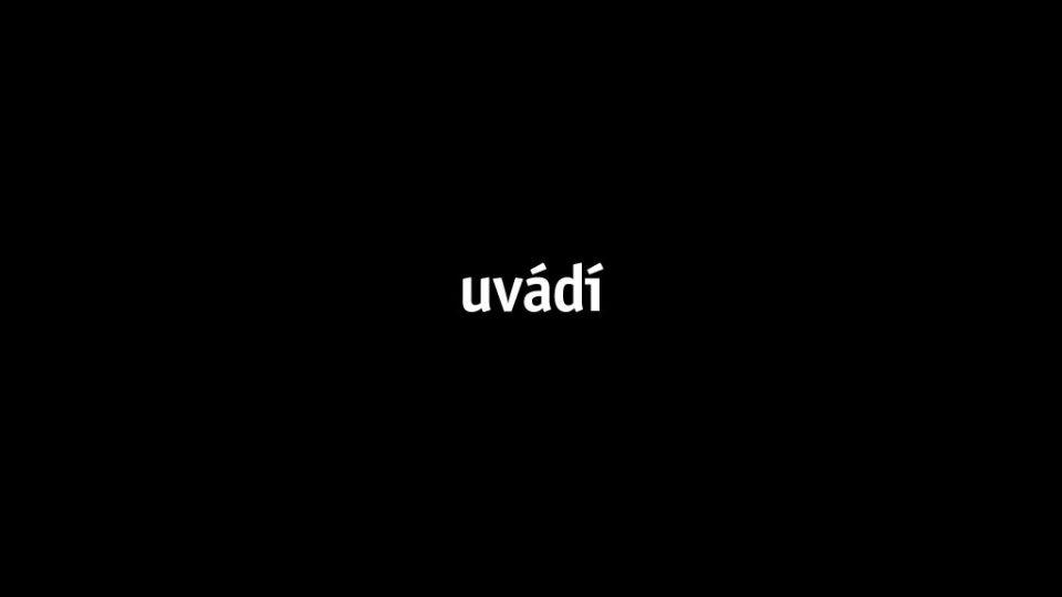 Přednáška David Vávra #4