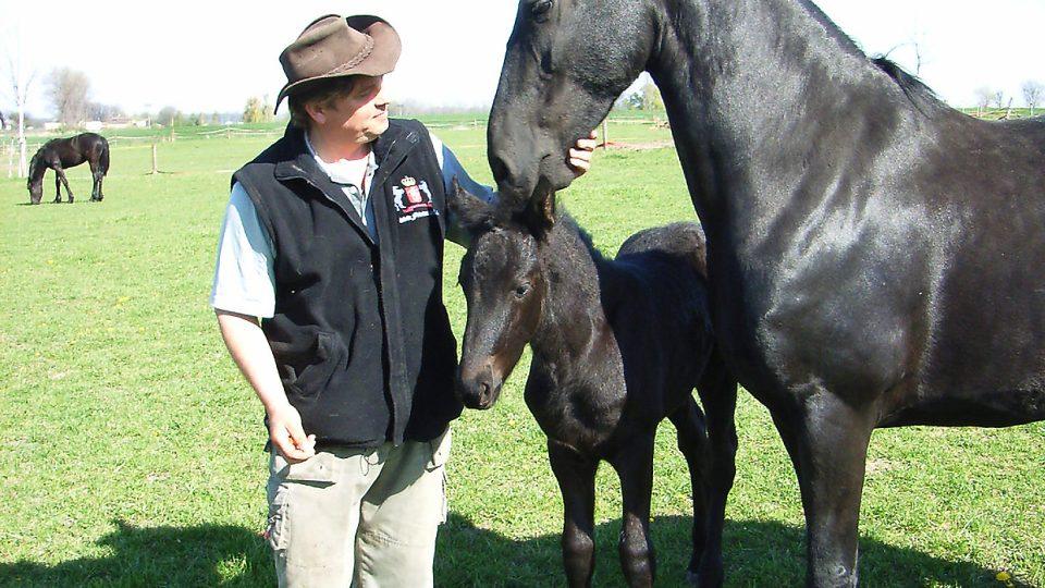 S chovatelem koní Janem Dotzauerem ml. jsme se v Blatě vydali na pastvinu za fríským královským koněm