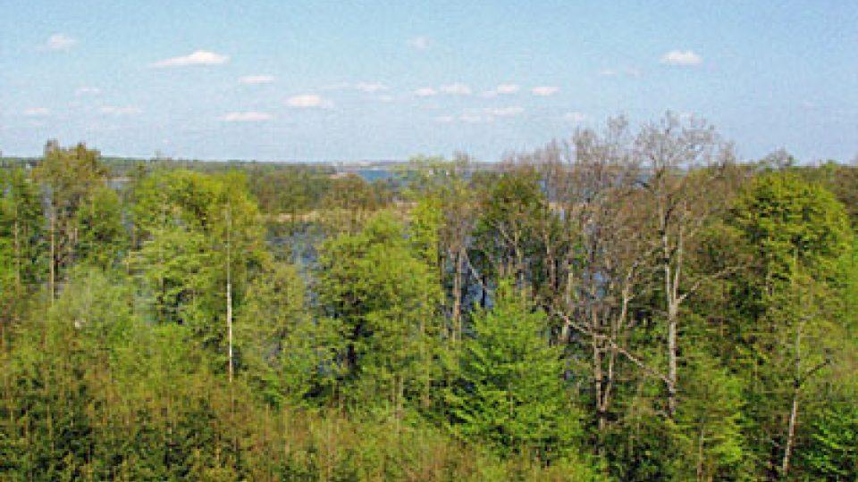 Pohled na jezero Mamry