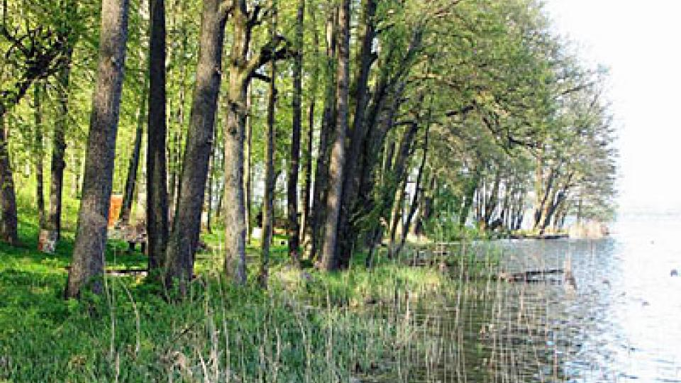 Na břehu jezera Mamry
