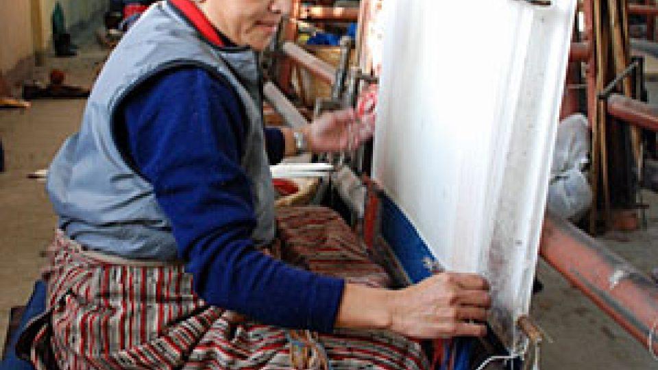 Tibeťanka Drič u stavu