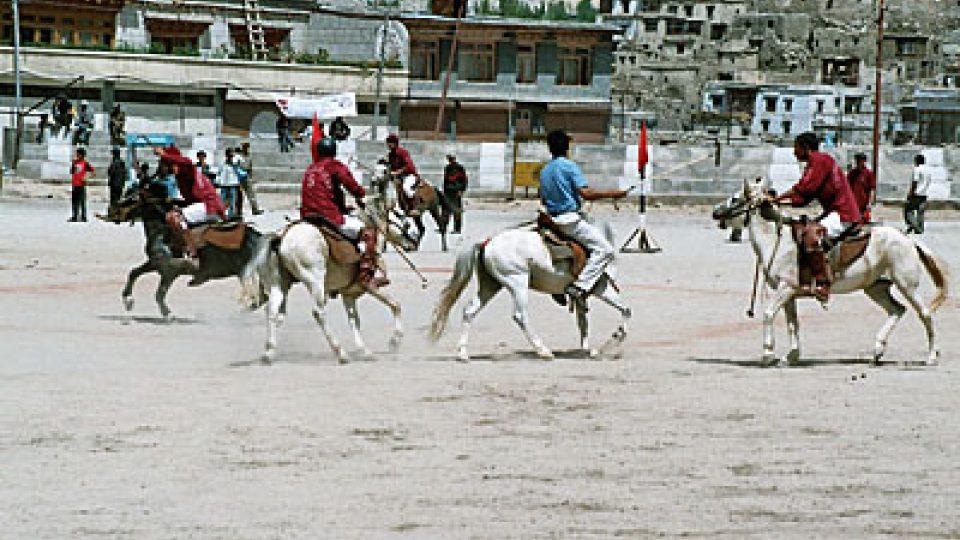 Ladakh je kolébkou koňského póla