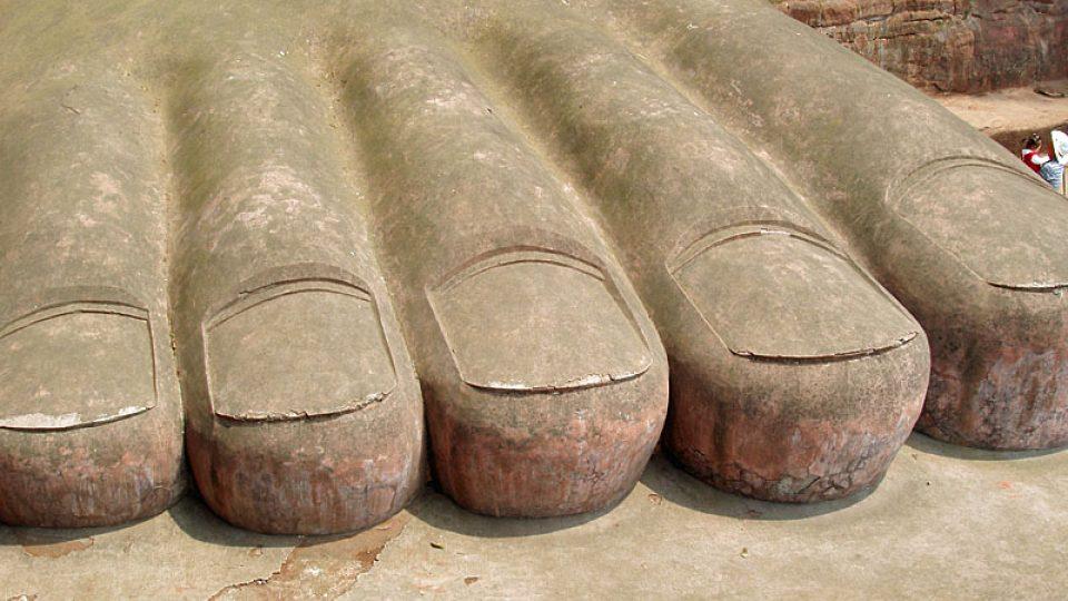 Noha Buddhy