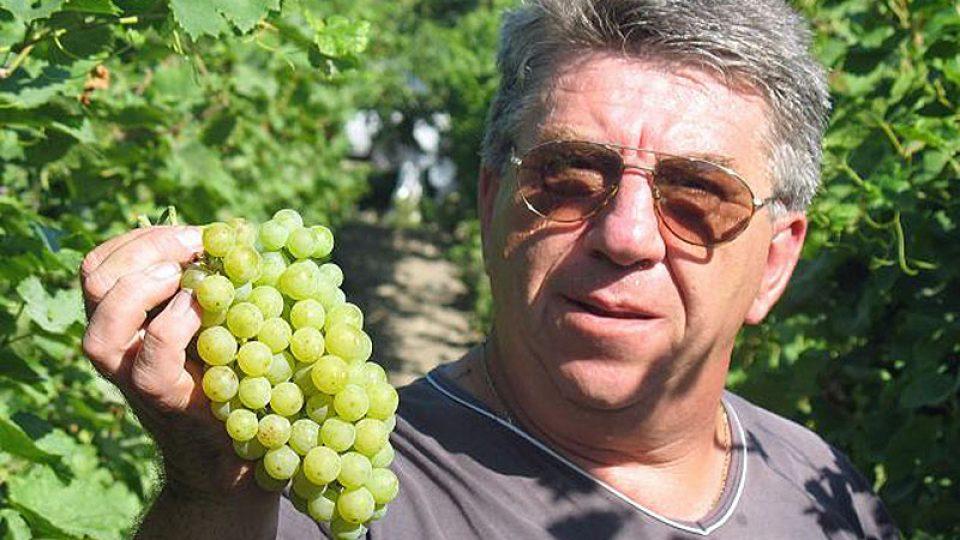 Miro Fekete ve vinohradu