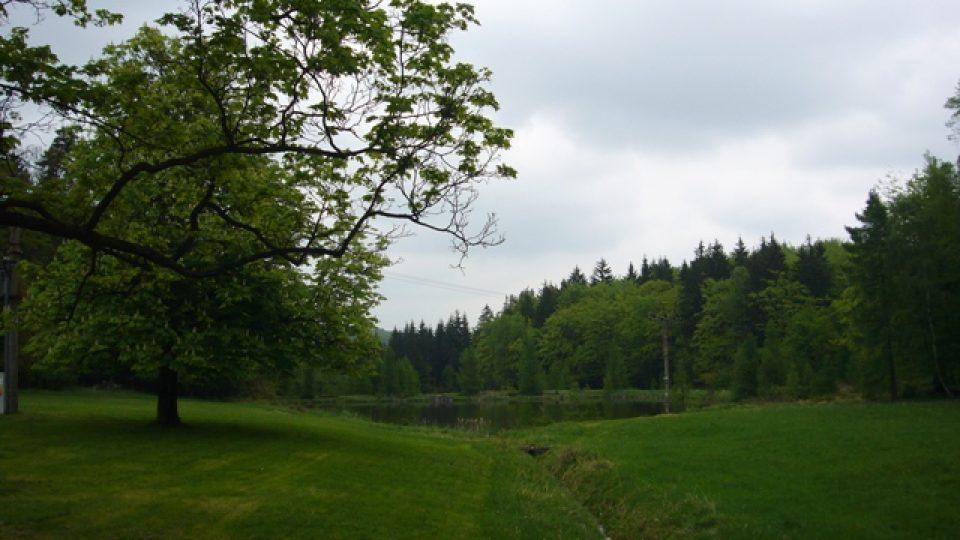 Okolí chaty Emilovna