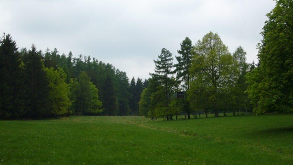 Lesnický park Křivoklátsko
