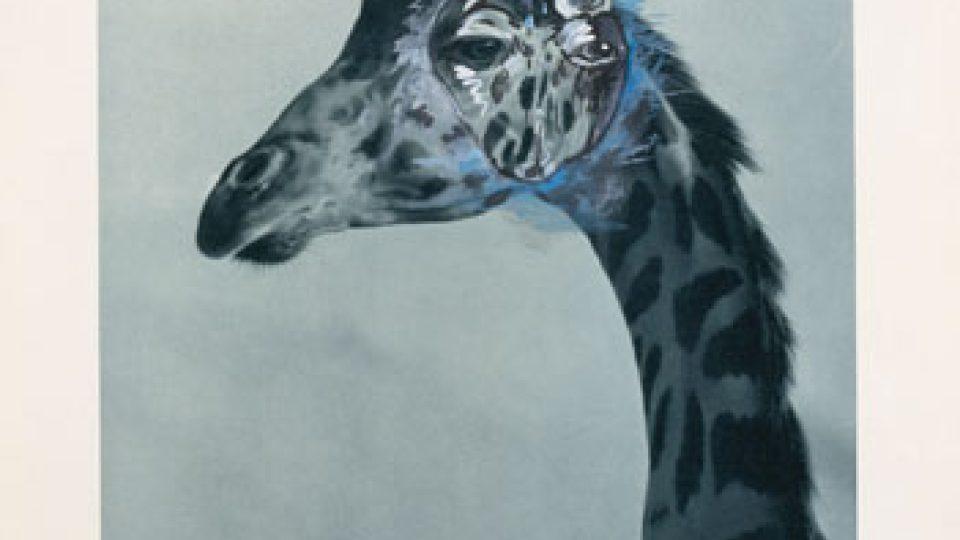 Martin Mainer, hlava žirafy 1995-96, 70 x 50 cm, akryl, reprodukce