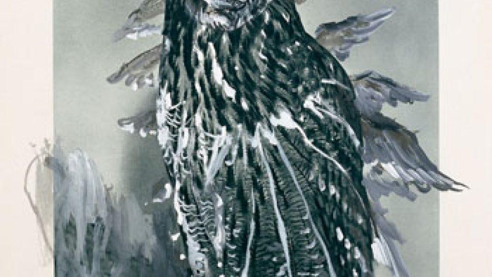 Martin Mainer, Výr velký 1995-96, 70 x 50 cm, akryl, reprodukce