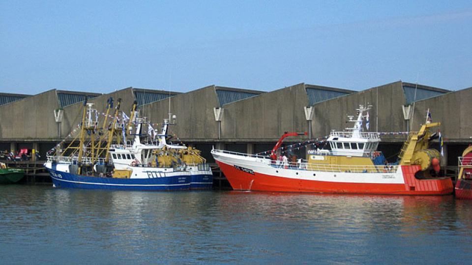 Rybářské lodě v přístavu Scheveningen