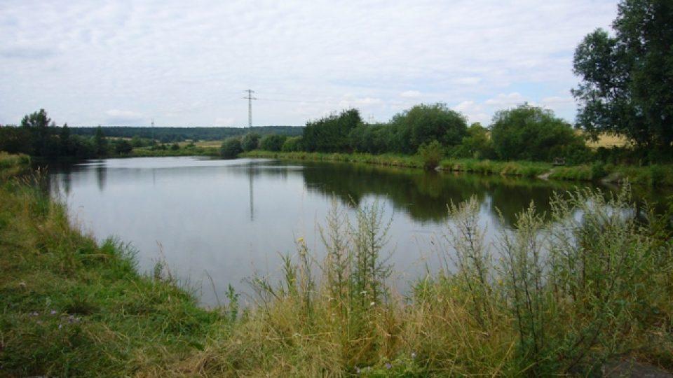 Rybník Salakvarda u Tuchlovic