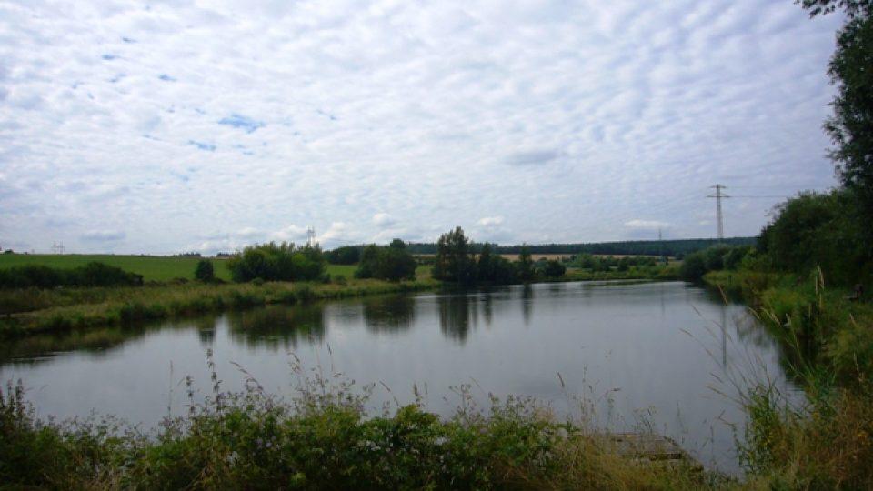Rybník Salakvarda u Tuchlovic (2)