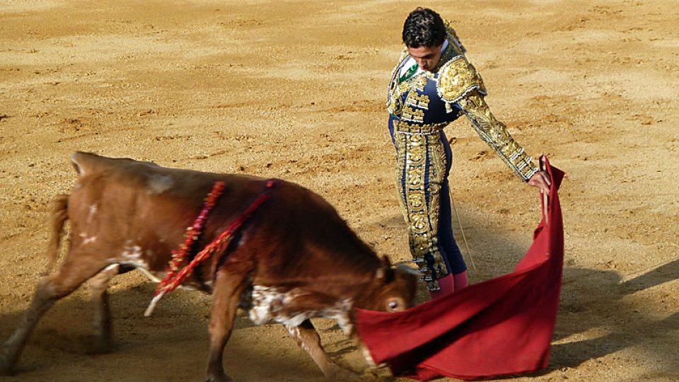 Toreador uhýbá býkovi v koridě
