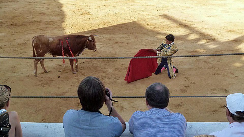 Toreador dráždí býka muletou