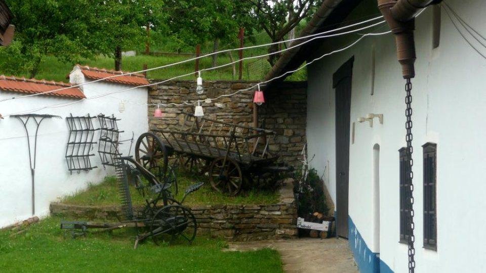 Žebřiňák před stodolou