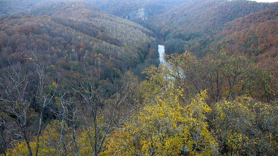 Meandry řeky Dyje protékající Národním parkem Podyjí