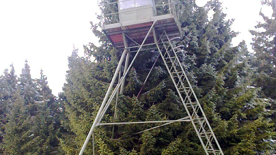 Takzvaná špačkárna na Bučině v NP Šumava