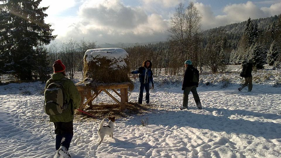Účastníci školení rysích hlídek u Lipky na Šumavě