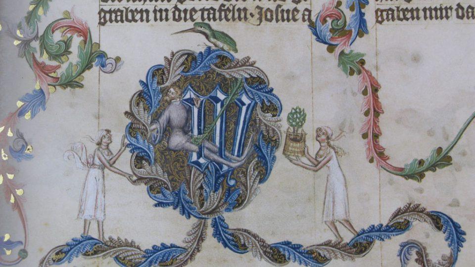 Proměny ledňáčka v Bibli Václava IV.
