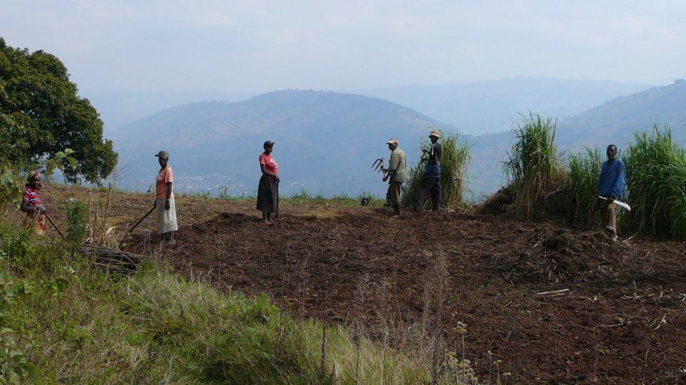 Rwandě se říká Země tisíců kopců. Svahy jsou strmé a terasy jsou jediný způsob, jak zvýšit obdělávanou plochu