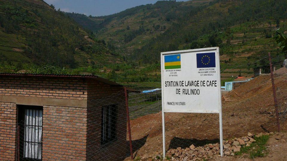Jeden kávovníkový keř ve Rwandě dává v průměru 3 až 4 kilogramy kávových bobulí za rok. Místní úřady ovšem naplánovaly, že by to už v roce 2012 mělo být dvakrát tolik