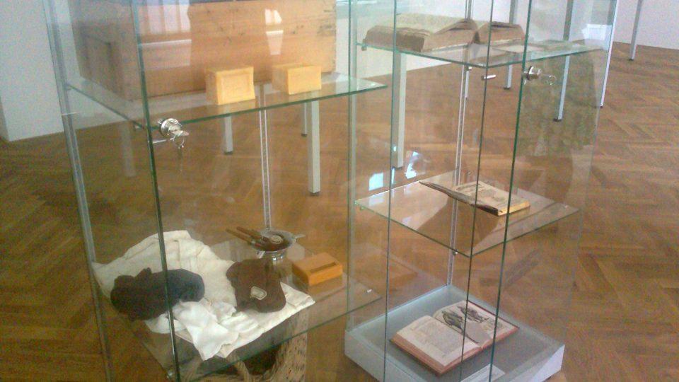 Collegium Bohemicum - vitríny s exponáty