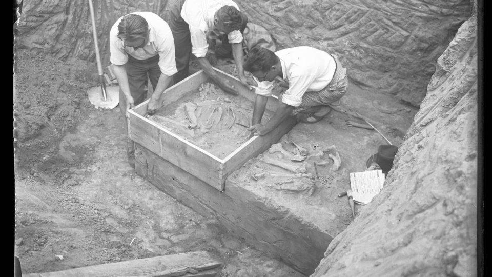 Hrob z doby stěhování národů z Čelákovic-Záluží se chystá k přesunu do Národního muzea - příprava bednění (archivní foto ze 30. let)