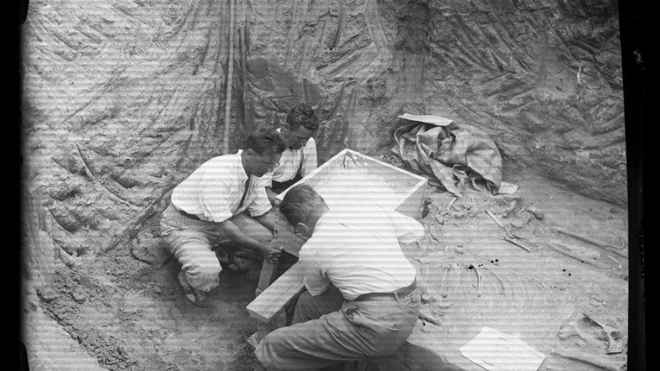Hrob z doby stěhování národů z Čelákovic-Záluží se chystá k přesunu do Národního muzea - oddělování bloku (archivní foto ze 30. let)