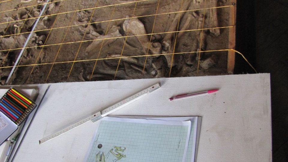 Zakreslování hrobu - pomůcky archeologů; na milimetrovém papíře rozkreslená kostra koně