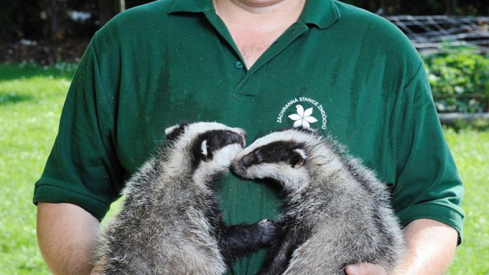 Záchranář zvířat Pavel Moulis se dvěma jezevci