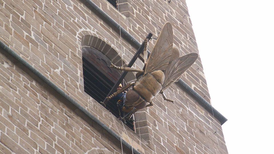 Lezci spouštějí mouchu z českobudějovické Černé Věže