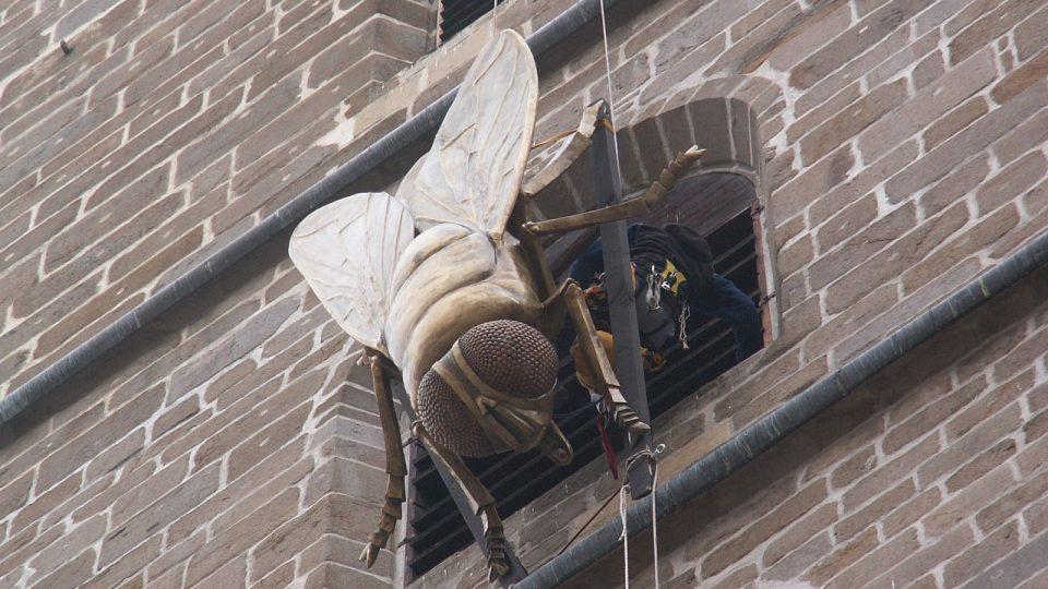 Lezci spouštějí mouchu z českobudějovické Černé Věže II