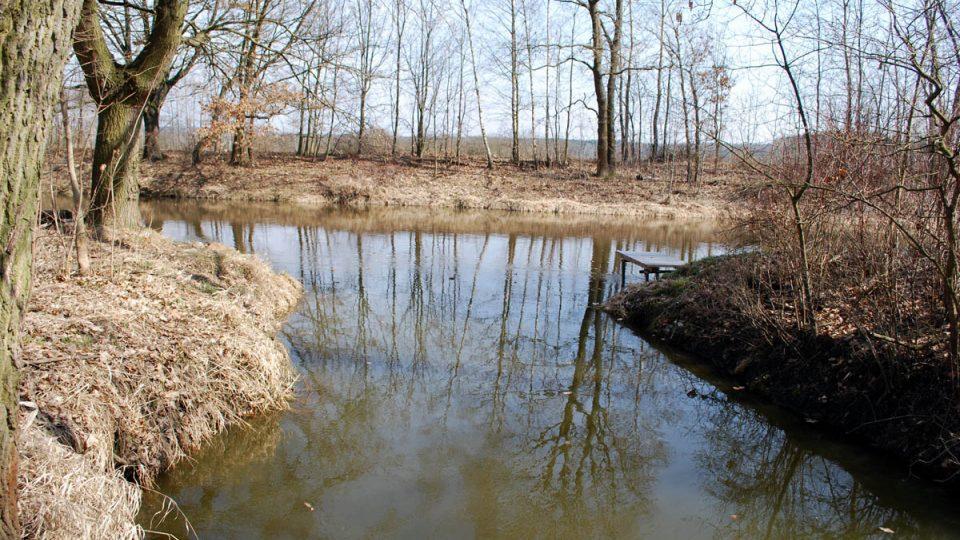 Zlatá stoka ústí do řeky Lužnice