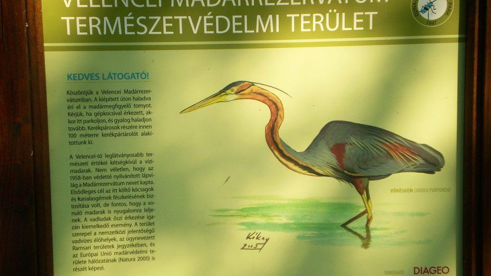 Ptačí rezervace u jezera Velence