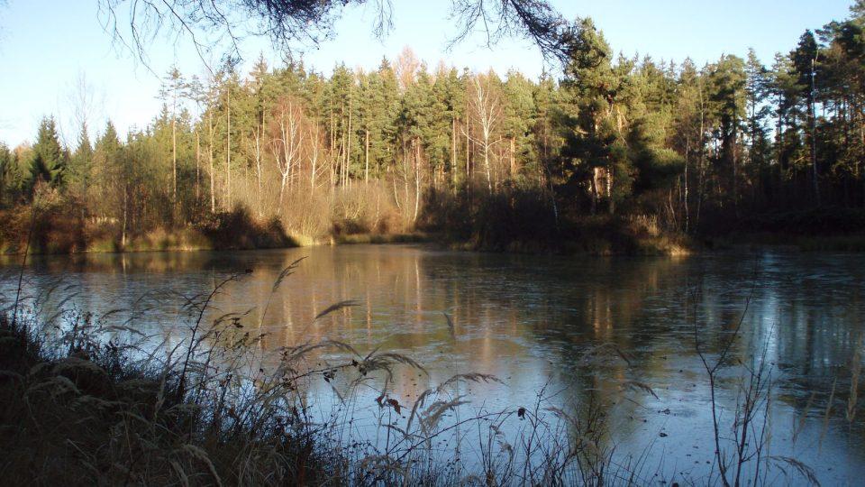 Druhý z rybníků na Dunajovické hoře
