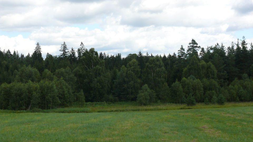 Na rozhraní lesa a louky bylo blato, které zaměstnalo všechny z Nové vsi
