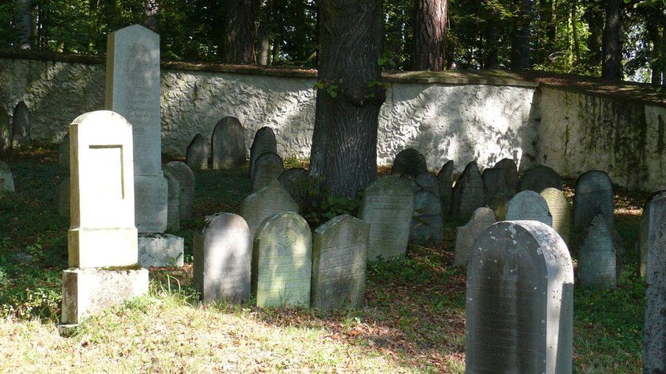 Židovský hřbitov Koloděje nad Lužnicí