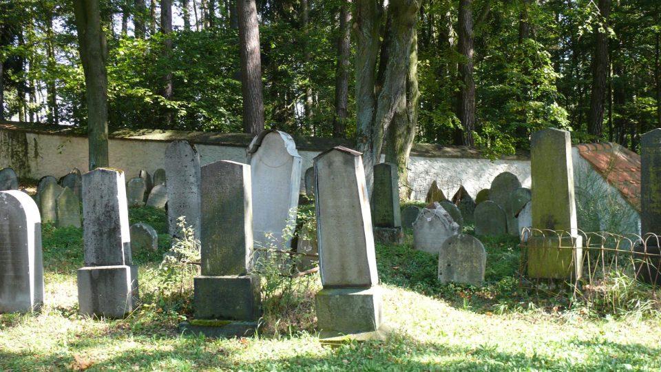 Židovský hřbitov v Kolodějích nad Lužnicí