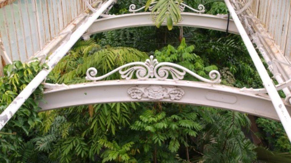 Palmový skleník v londýnské botanické zahradě