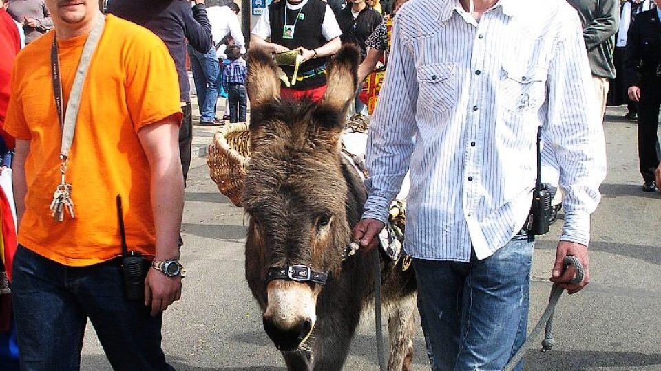 Obyvatelé města jsou hrdí, že sami sebe mohou nazývat osly