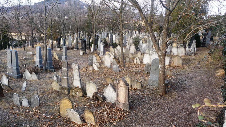 Mikulovský židovský hřbitov je největším historickým židovským hřbitovem na území naší republiky