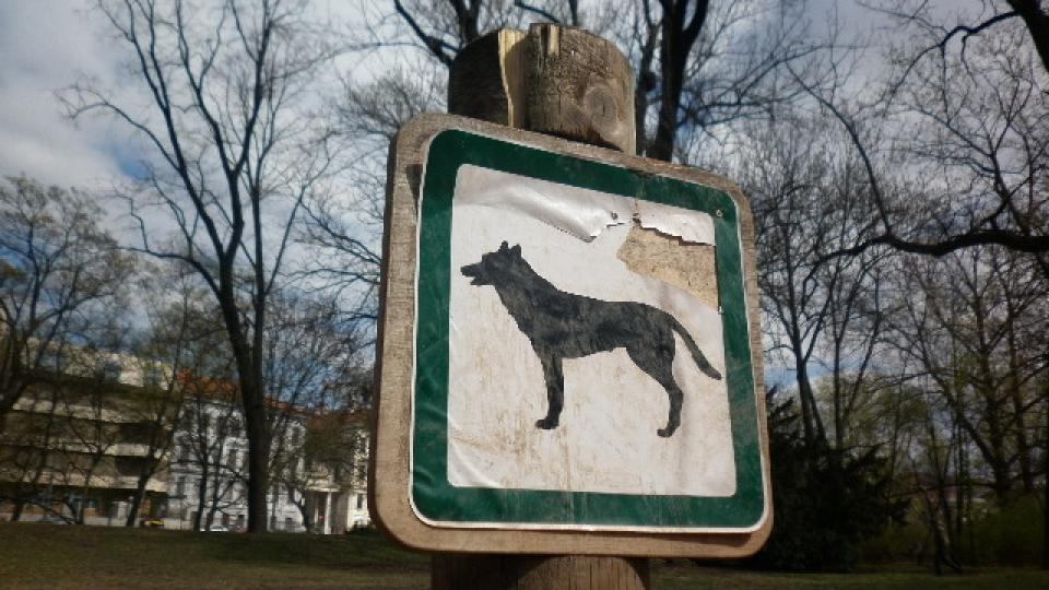 Lužánky - výběh pro psy