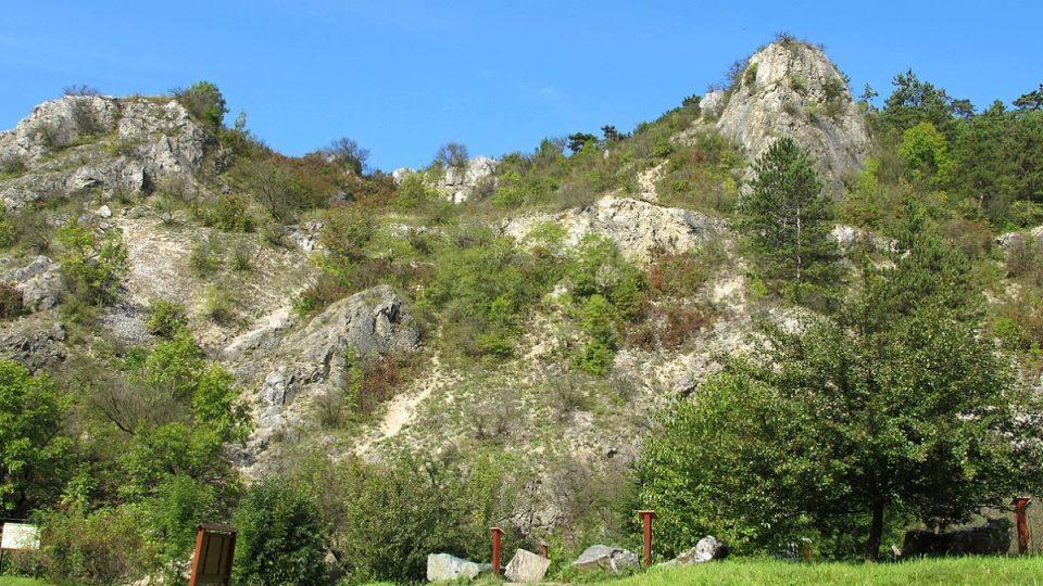 Vrch Turold je přírodní rezervací od roku 1946