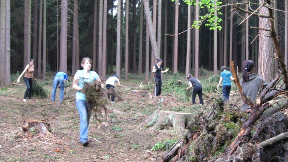 Dobrovolníci v lese